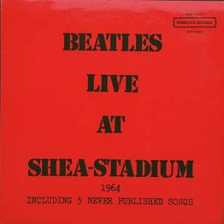 Live At Shea Stadium - LP cover